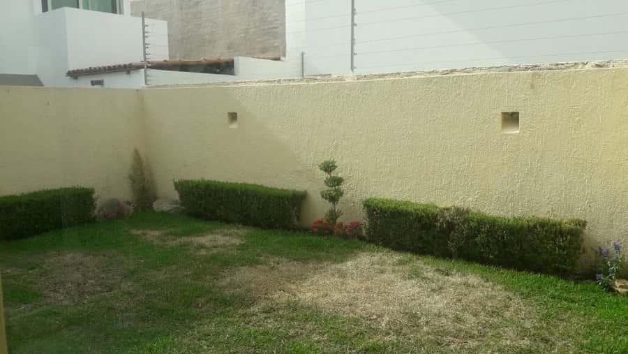 Jardin real casa en renta coto 11 for Jardin real zapopan